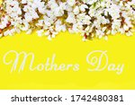 The Inscription Mothers Day Is...