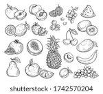 sketch fruits. strawberry melon ...   Shutterstock . vector #1742570204