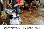 Small photo of Asian farmer pouring fresh milk from milk churn container can into another. Local dairy farm in Thailand