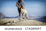 Stock photo running dog 174289097