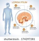 Pituitary. Modern Medical...