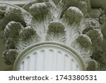 Corinthian Style Stone Column...