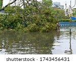 Deshapriya Park  Kolkata  5 22...