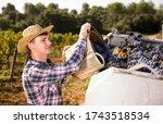 Young Confident Farmer...