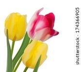 tulip composition on white... | Shutterstock .eps vector #174366905