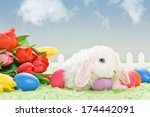 white baby rabbit with flowers... | Shutterstock . vector #174442091