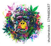 Abstract Colorful Monkey...