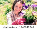 Beautiful woman gardener with flowers. She plants seedlings in the garden at home. The farmer holds the sprouts in his hands. - stock photo