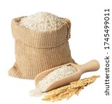 Small photo of long rice in burlap sack and wooden scoop with ears isolated on white background