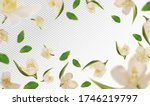 3d realistic jasmine with green ... | Shutterstock .eps vector #1746219797