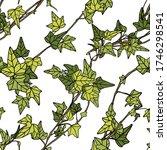 seamless vector pattern of ivy... | Shutterstock .eps vector #1746298541
