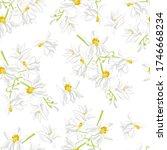moringa white flowers seamless... | Shutterstock .eps vector #1746668234
