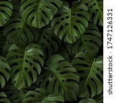 botanical illustration with... | Shutterstock .eps vector #1747126331