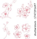 branch of cherry blossom on... | Shutterstock .eps vector #1747291697