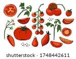 vegetable vector sketch. a set...   Shutterstock .eps vector #1748442611
