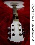 White Guitar In Burgundy Tulle...