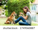 Young Female And Dog Summer...