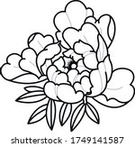 peony flower decorative flash...   Shutterstock .eps vector #1749141587