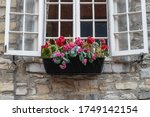 View Of A Flower Pot With...