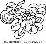 flower art black and white...   Shutterstock .eps vector #1749142337
