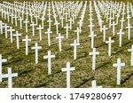 Military Cemetery With White...