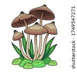 group of mushrooms in the grass.... | Shutterstock .eps vector #1749547271