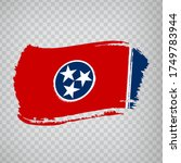 flag of tennessee  from brush...