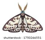 spotted moth. vector... | Shutterstock .eps vector #1750266551