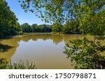 The Lake In Park Ardooieveld  ...