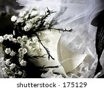 white boutonniere with baby's...   Shutterstock . vector #175129