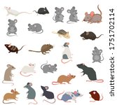 Rat Breeds Icon Set Flat Style...