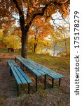 place for picnic at autumn | Shutterstock . vector #175178279