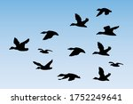 silhouette vector of a flying...   Shutterstock .eps vector #1752249641