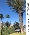 Nice Postcard Cyprus Part Of...