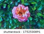 Digital Illustration  Blooming...