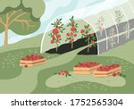 greenhouse with tomato plants.... | Shutterstock .eps vector #1752565304