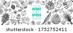 herbs and spices hand drawn... | Shutterstock .eps vector #1752752411