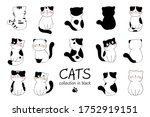draw vector illustration... | Shutterstock .eps vector #1752919151