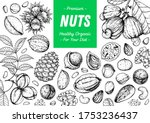 nuts collection hand drawn... | Shutterstock .eps vector #1753236437