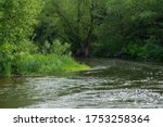 The Rural Nature Of The River ...
