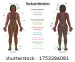 meridian system chart  black... | Shutterstock .eps vector #1753286081
