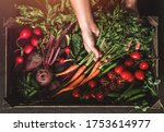 farmer folding fresh vegetables ... | Shutterstock . vector #1753614977