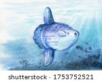 watercolor drawing of a big moon fish, mola, ocean sunfish. with water background