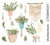 Boho Style Houseplant In A...