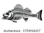 Bass Fish Skeleton Monochrome...