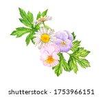 watercolor drawing wild flowers ...   Shutterstock . vector #1753966151