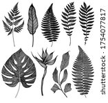 Tropical Leaves Set. Isolated...