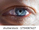 Close Up Of Human Blue Eye....