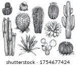 sketch cactus. hand drawn wild... | Shutterstock .eps vector #1754677424