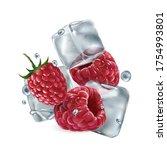 fresh raspberries with ice... | Shutterstock .eps vector #1754993801